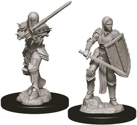 D&D Nolzur's Marvelous Miniatures: Female Human Fighter