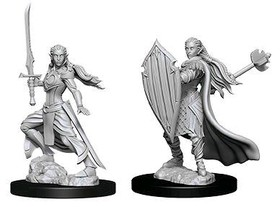 D&D Nolzur's Marvelous Miniatures: Female Elf Paladin